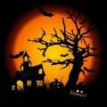 31 de outubro: a história do Halloween